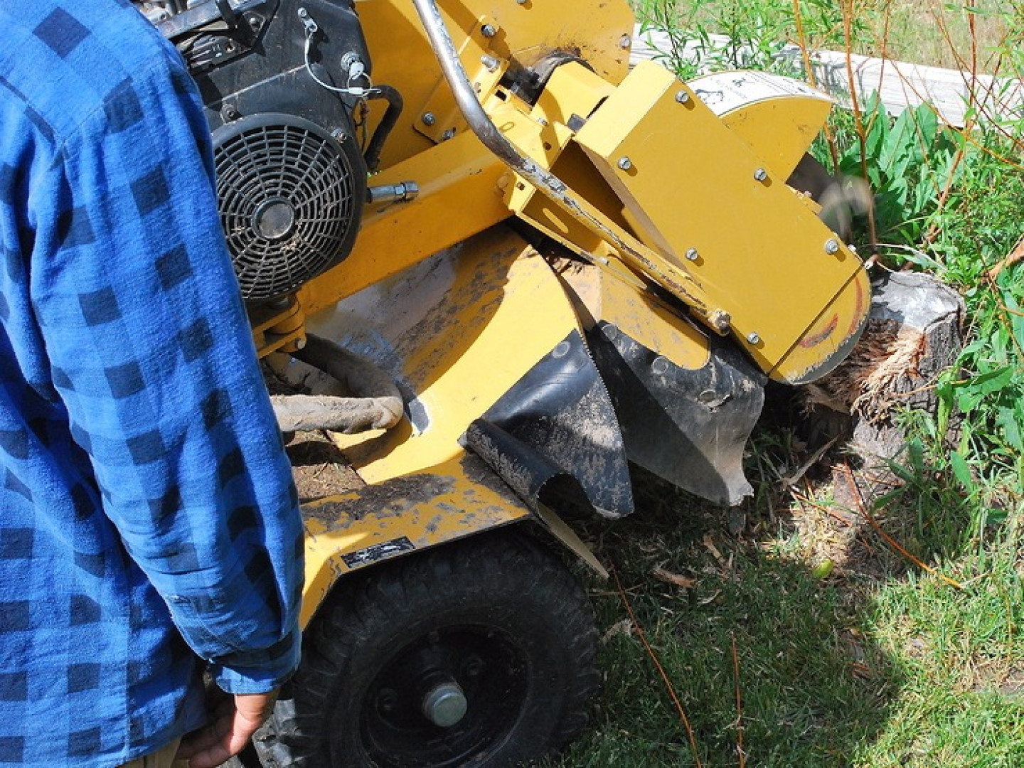 Stump removal services in the Crestview Hills, Fort Mitchell & Fort Thomas, KY