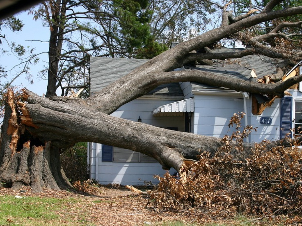 Storm damage cleanup services in Crestview Hills & Fort Mitchell, KY